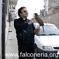 prete_falco