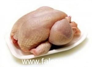 carne pollo