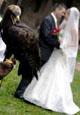 matrimonio_rapace