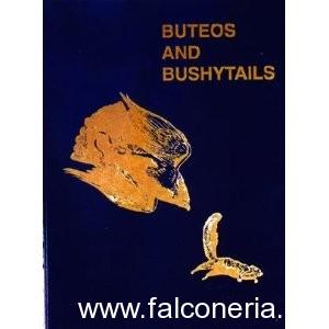 Buteos and bushytails