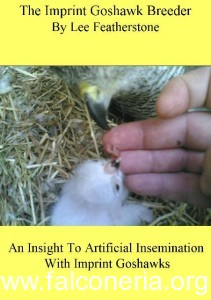 The imprint goshawk breeder