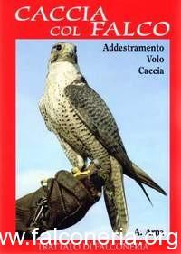caccia col falco arpa