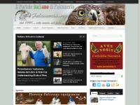 falconeria.org