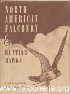 north american falconry and hunting hawks old