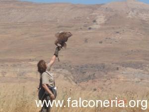 Foto 1 - Rufus primo volo libero