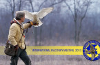 International falconry meeting 2013 (Italy)