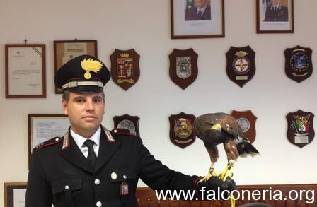 falco-sacrofano_full