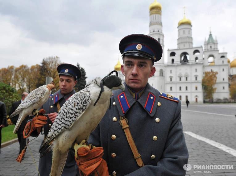 Falconeria russia