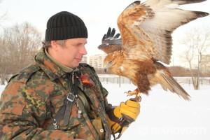 moderno falconiere russo