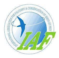 IAF falconry