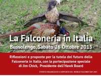 falconeria in Italia