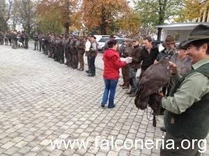 falconieri austriaci