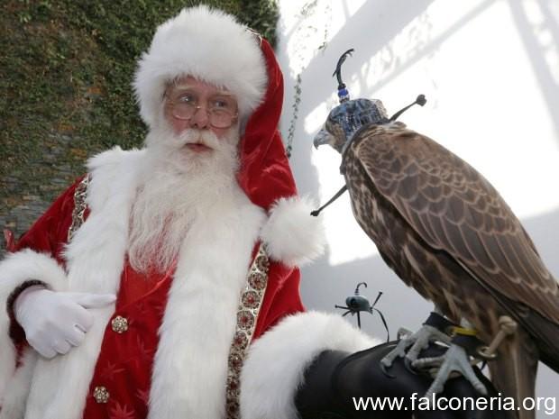 Babbo Natale falconiere