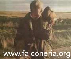 Falconiere muore annegato cercando di salvare il suo falco caduto in un pozzo