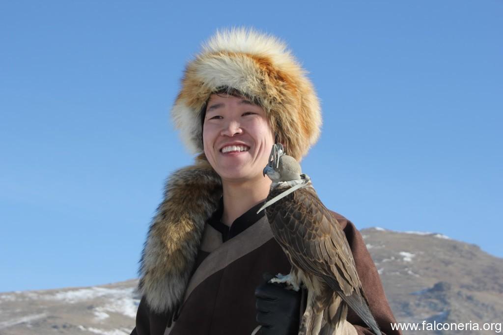 falconeria mongolia