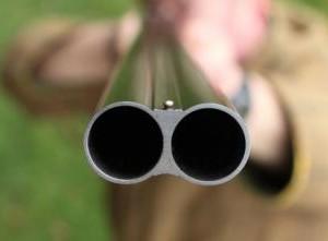 Gli obiettori di coscienza ora vogliono il fucile