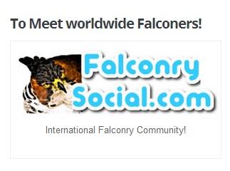 banner falconry social
