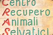Nuovo Centro recupero animali selvatici nella provincia di Bologna