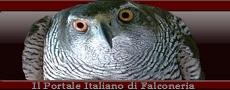Il Portale Italiano di Falconeria